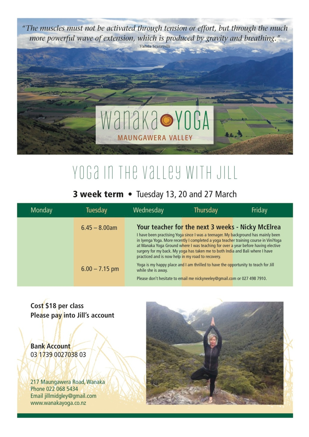 Wanaka Yoga Nicky March copy